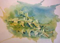 Salat, Löwenzahn, Aquarellmalerei, Aquarell