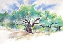 Griechenland, Olivenbaum, Türkei, Aquarellmalerei