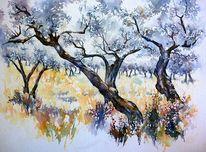 Aquarellmalerei, Olivenbaum, Olive grove, Italien