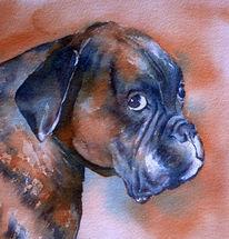 Hund, Hundeportrait, Hundeaugen, Aquarellmalerei