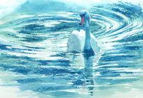 Schwan, Aquarellmalerei, White swan, Aquarell