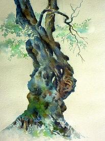 Aquarellmalerei, Baum, Griechenland, Olivenbaum