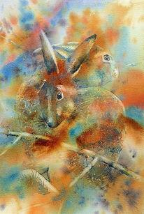 Aquarellmalerei, Hase, Aquarell, Tiere