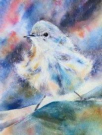 Vogel, Aquarellmalerei, Singvogel, Aquarell