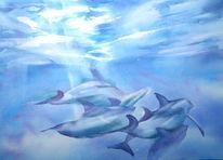 Wasser, Licht, Aquarellmalerei, Delfin