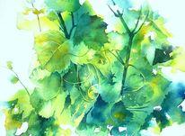 Aquarellmalerei, Weinlaub, Wein, Grün