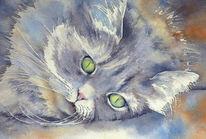 Katze, Aquarellmalerei, Schnurrhaare, Aquarell