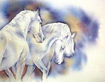 Wild, Pferde, Mähne, Aquarellmalerei