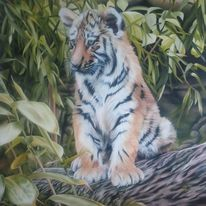 Ölfarben, Tiger, Tiere, Pflanzen