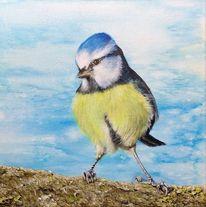 Blaumeise, Vogel, Acrylmalerei, Malerei
