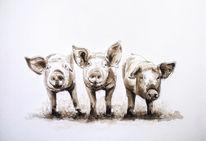 Ferkel, Tusche, Zeichnung, Schwein