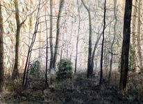 Winter, Winterwald, Wald, Aquarell