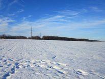 Schnee, Feld, Winterzeitnter, Natur