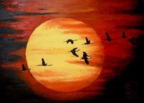 Zugvögel, Süden, Sehnsucht, Rot
