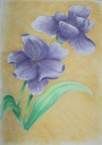 Iris, Pastellmalerei, Pflanzen, Kreide