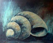 Muschel, Malerei