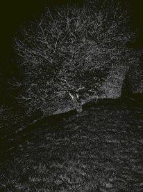 Fotografie, Nacht, Tag