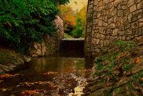 Wasser, Landschaft, Fotografie