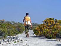 Mann, Spaziergang, Afrika, Tafelberg