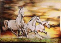 Steppe, Flucht, Pferde, Sandsturm