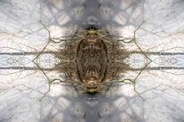 Kreis, Spiegelung, Natur, Kanal