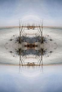 Schilf, Tor, Mystik, Natur