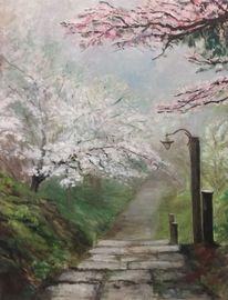Frühling, Natur, Baumblüte, Blüte