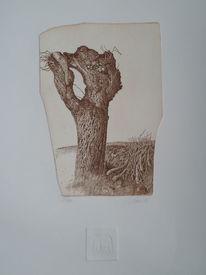 Realismus, Weiden, Radierung, Baum