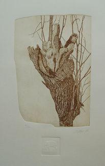 Realismus, Ätzen, Alte bäume, Baum