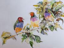 Aquarellmalerei, Aquarell, Vogel