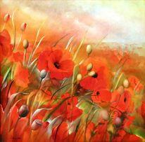 Blumen, Landschaft, Mohnfelder, Mohn