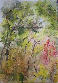 Baum, Licht, Wald, Aquarell