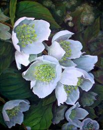 Jasminblüten, Blumen, Malerei