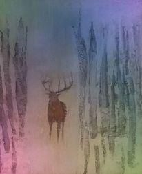 Wald, Romantik, Lauschen, Hirsch