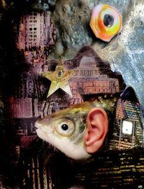 Ohr, Fisch, London, Stern