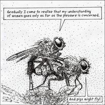 Bukowski zitat, Fliegen, Paarung, Illustrationen