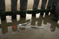 Wasser, Körper, Wellenbrecher, Sand
