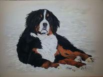 Hund, Tierportrait, Pastellmalerei, Kreide