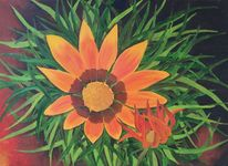 Blüte, Provence, Orange, Grün
