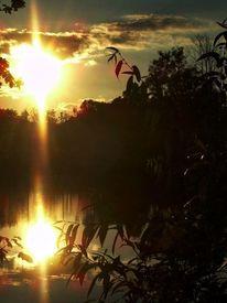 Wasser, Spiegelung, Abend, Sonnenuntergang