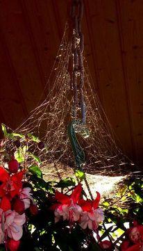 Spinnennetz fuchsien weben, Fotografie
