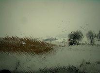 Weiß, Regen, Glas, Wasser