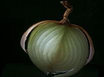 Zwiebeln, Gemüse, Fotografie