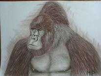 Tiere, Fell, Gorilla, Pastellmalerei