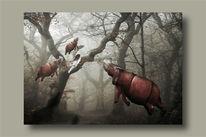 Nashorn, Baum, Wald, Mädchen