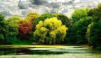 Grün, Landschaft, See, Park
