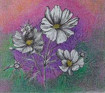 Pflanzen, Schmuckkörbchen, Blüte, Malerei