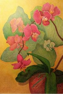 Topf, Orchidee, Pflanzen, Malerei