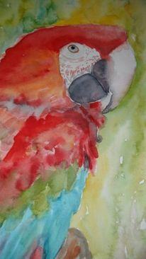 Aquarellmalerei, Papagei, Aquarell