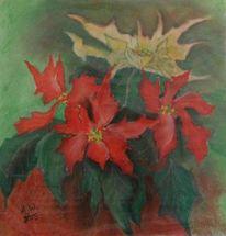 Weihnachten, Weihnachtsstern, Pflanzen, Malerei